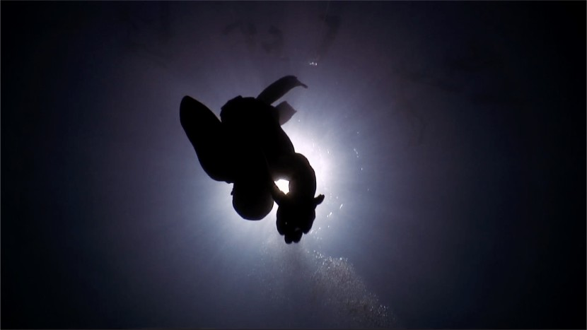 Valerio Perini Underwater Apnea Freediving